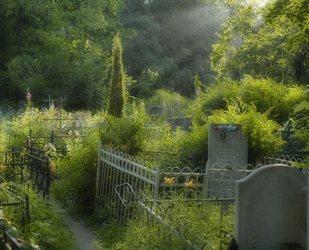 как правильно вести себя на кладбище - правила поведения на кладбище 5
