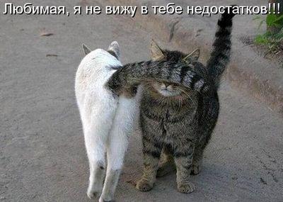 любовная оморочка