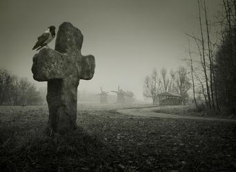 ворон на кресте