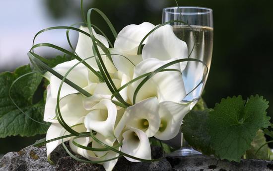 Можно ли приносить на кладбище живые цветы искусственные цветы для рукоделия купить